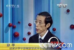 北京大学中国经济研究中心教授陈平