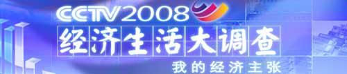 2008经济生活大调查