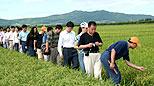 现代化大农业